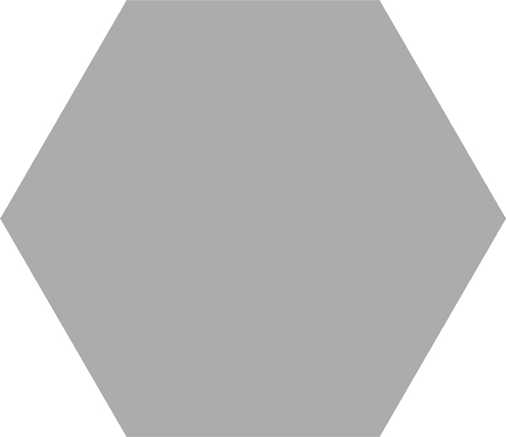 Basic Hex silver